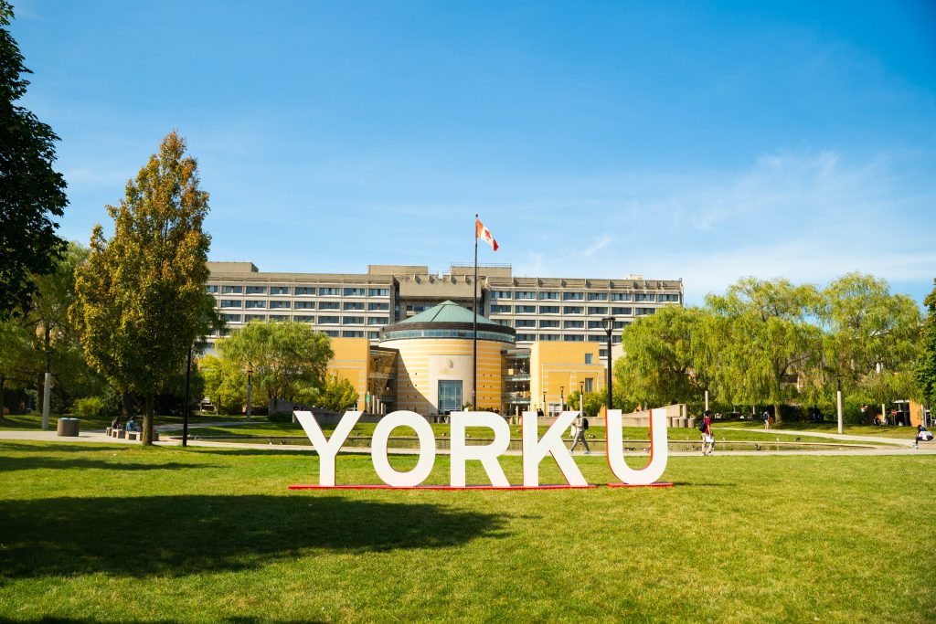york sign in commons
